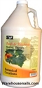Picture of ProNail Lotion - 01303 Peach & Patchouli Lotion 1 Gallon